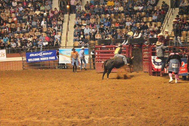 2013-SLE-Rodeo-019