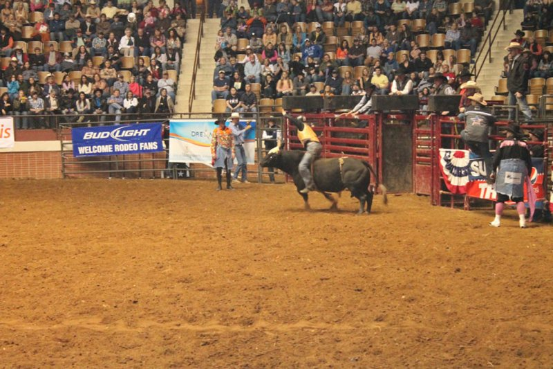 2013-SLE-Rodeo-020