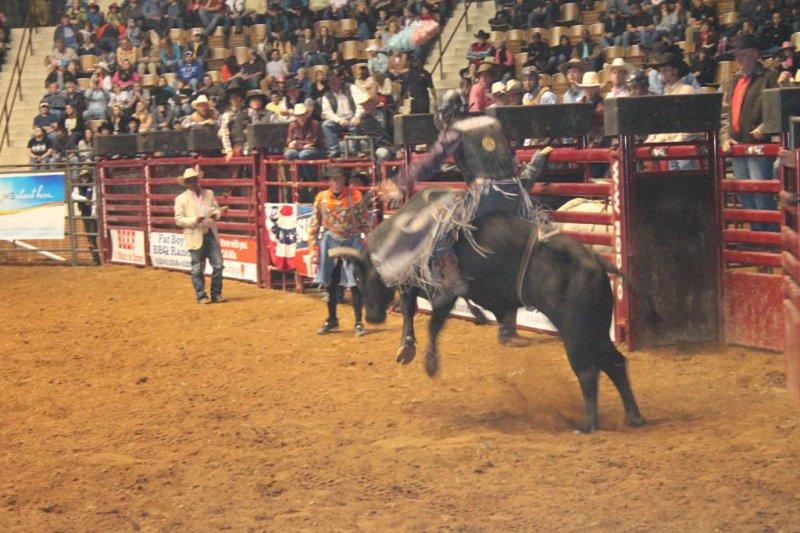 2013-SLE-Rodeo-022