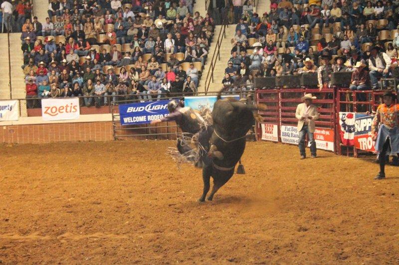 2013-SLE-Rodeo-023