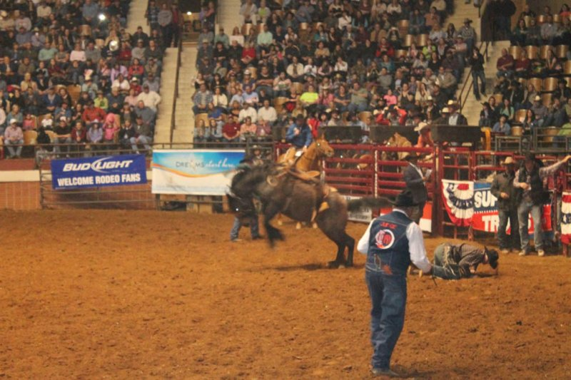 2013-SLE-Rodeo-080