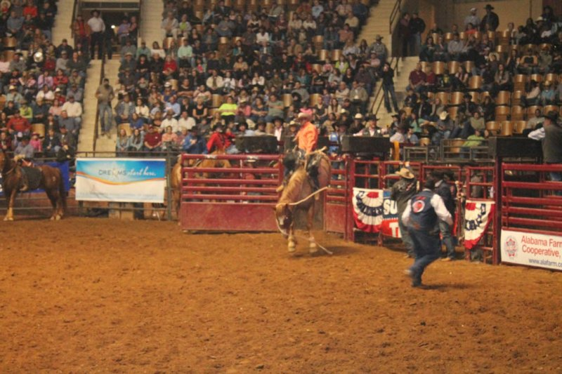 2013-SLE-Rodeo-081