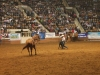 2013-SLE-Rodeo-014