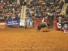 2013-SLE-Rodeo-019