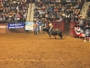 2013-SLE-Rodeo-020