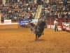 2013-SLE-Rodeo-023