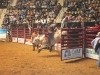 2013-SLE-Rodeo-024