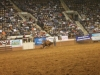 2013-SLE-Rodeo-088